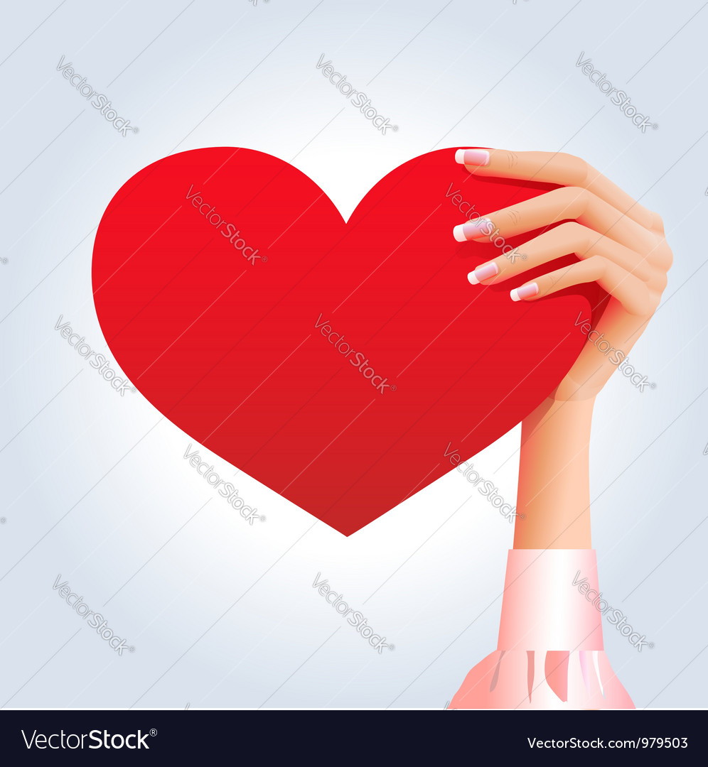 Female hand holding deep red heart vector | Price:  Credit (USD $)