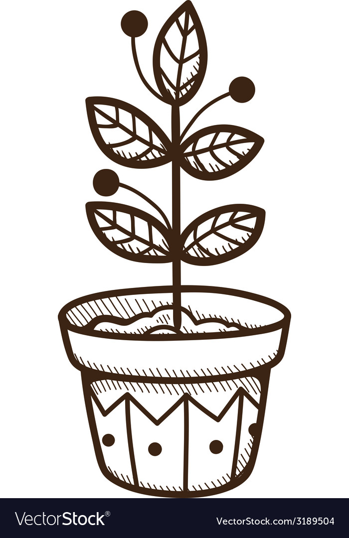 Plant growing in a pot vector | Price: 1 Credit (USD $1)
