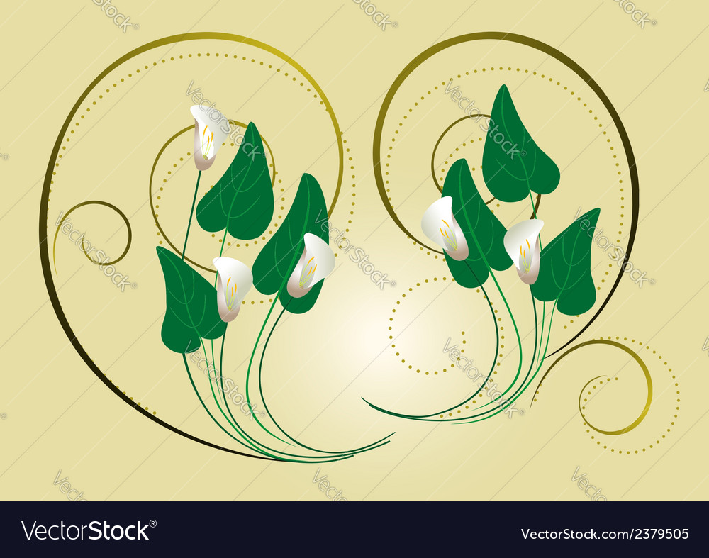 Calla flowers with the decor of spirals on a light vector | Price: 1 Credit (USD $1)