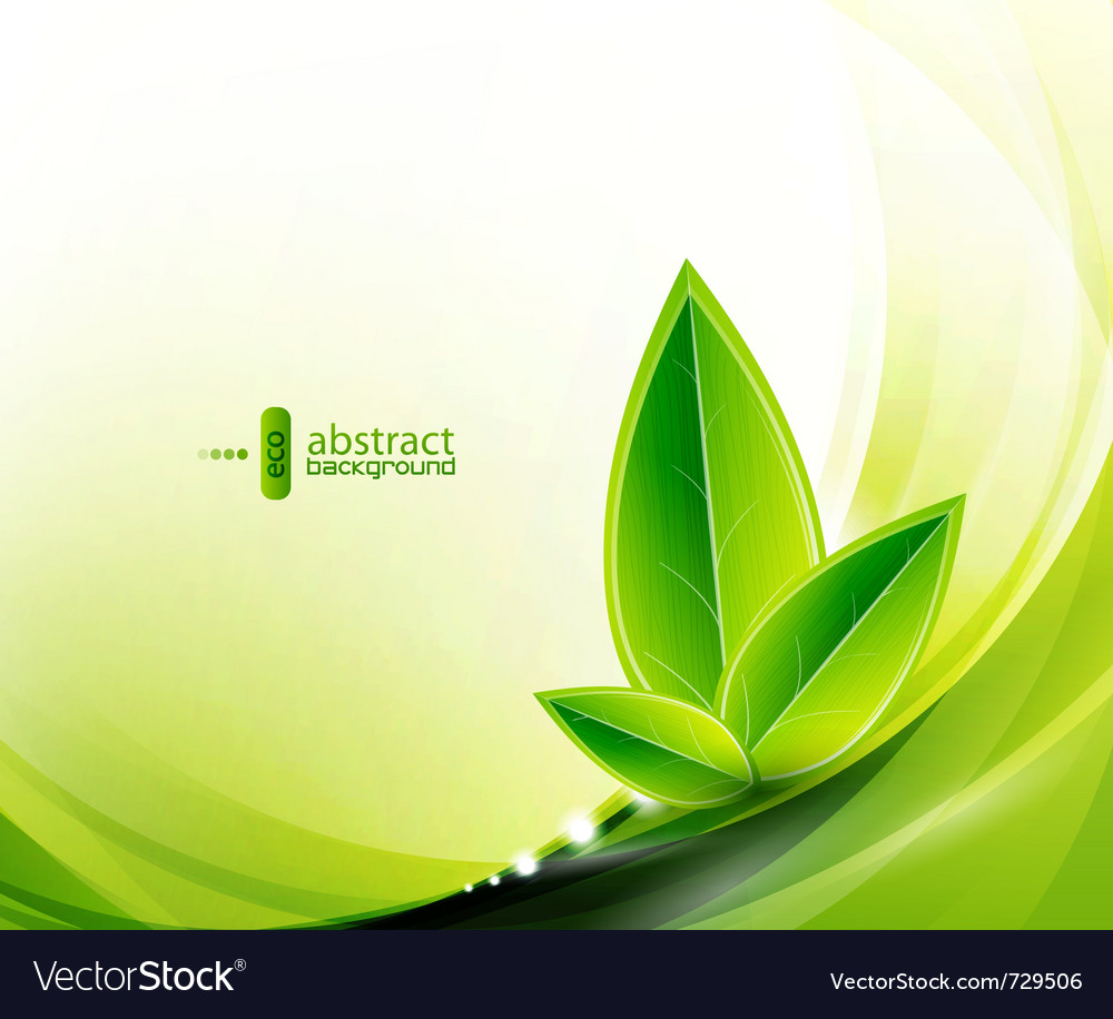 Eco leaves and green wave vector | Price: 1 Credit (USD $1)