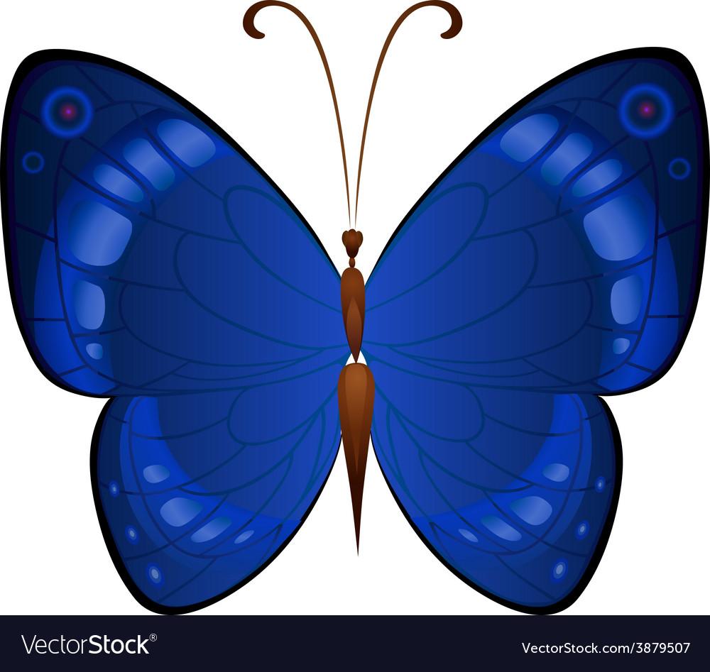 Dark blue butterflies vector | Price: 1 Credit (USD $1)