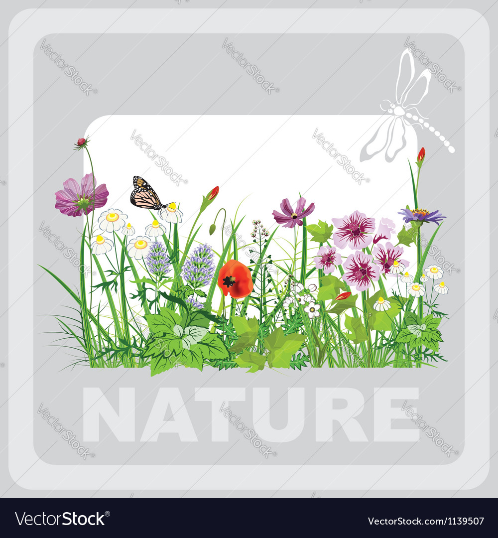 Green grass and flowers landscape natural vector | Price: 1 Credit (USD $1)