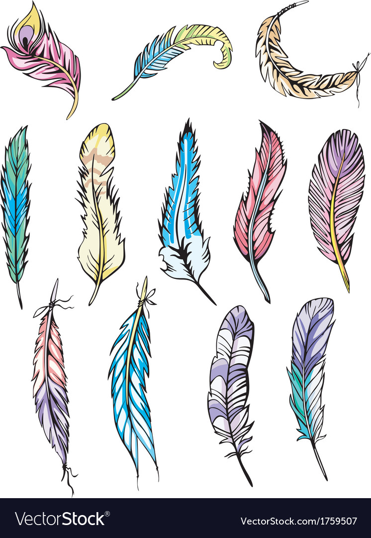 Motley feathers vector | Price: 1 Credit (USD $1)