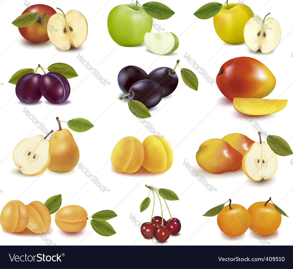 Group with fruits vector | Price: 1 Credit (USD $1)