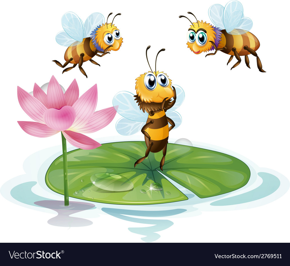 Lotus and bees vector | Price: 1 Credit (USD $1)