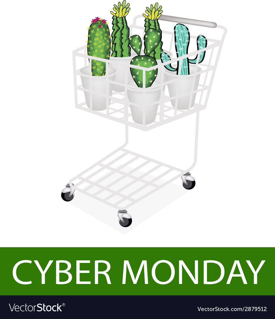 Cactus and cactus flowers in cyber monday shopping vector | Price: 1 Credit (USD $1)
