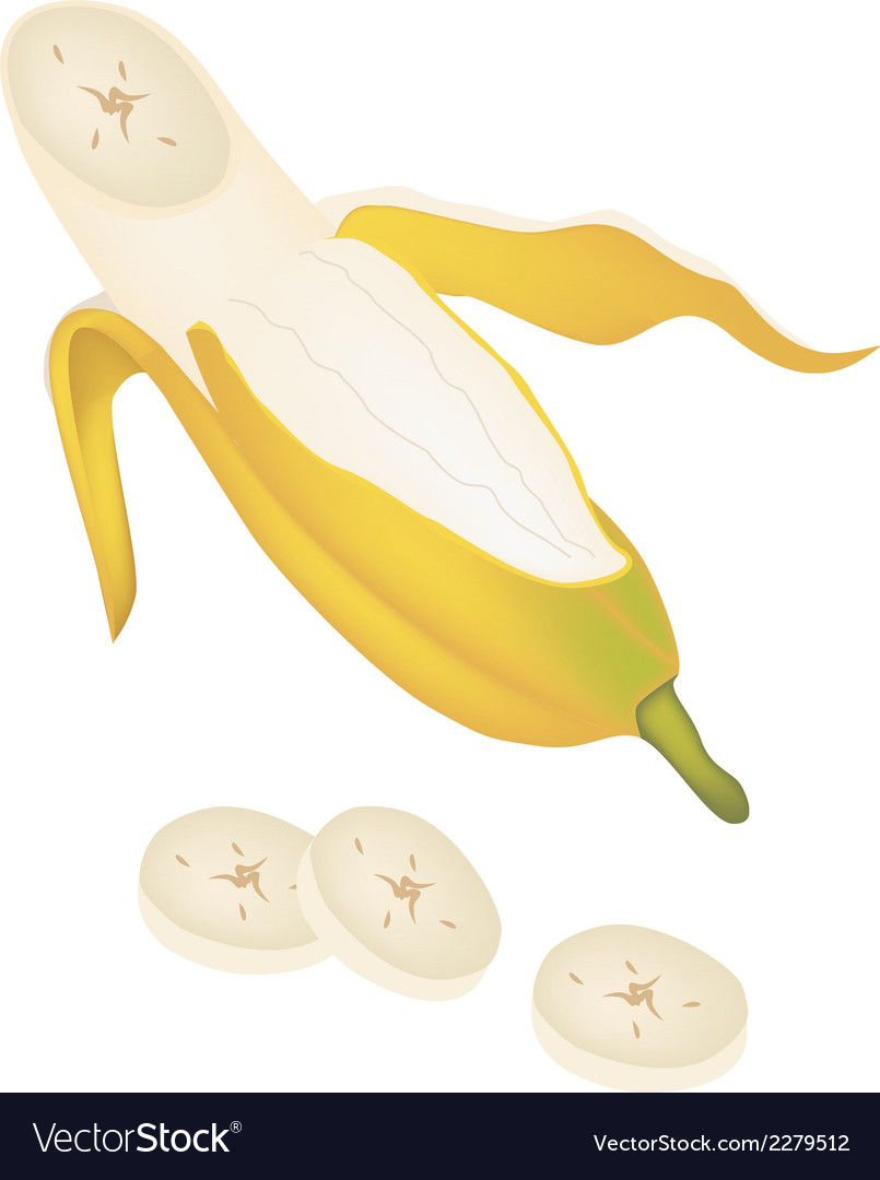 Open ripe cultivated banana on white background vector | Price: 1 Credit (USD $1)