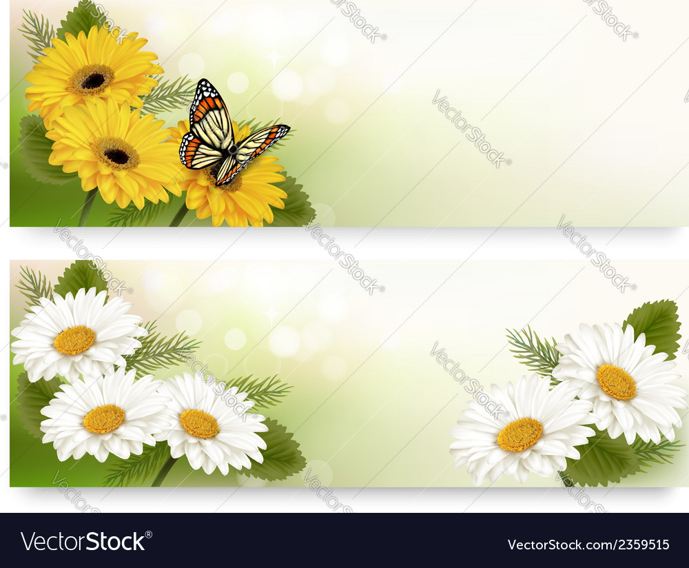 Summer banners with colorful flowers and butterfly vector | Price: 1 Credit (USD $1)