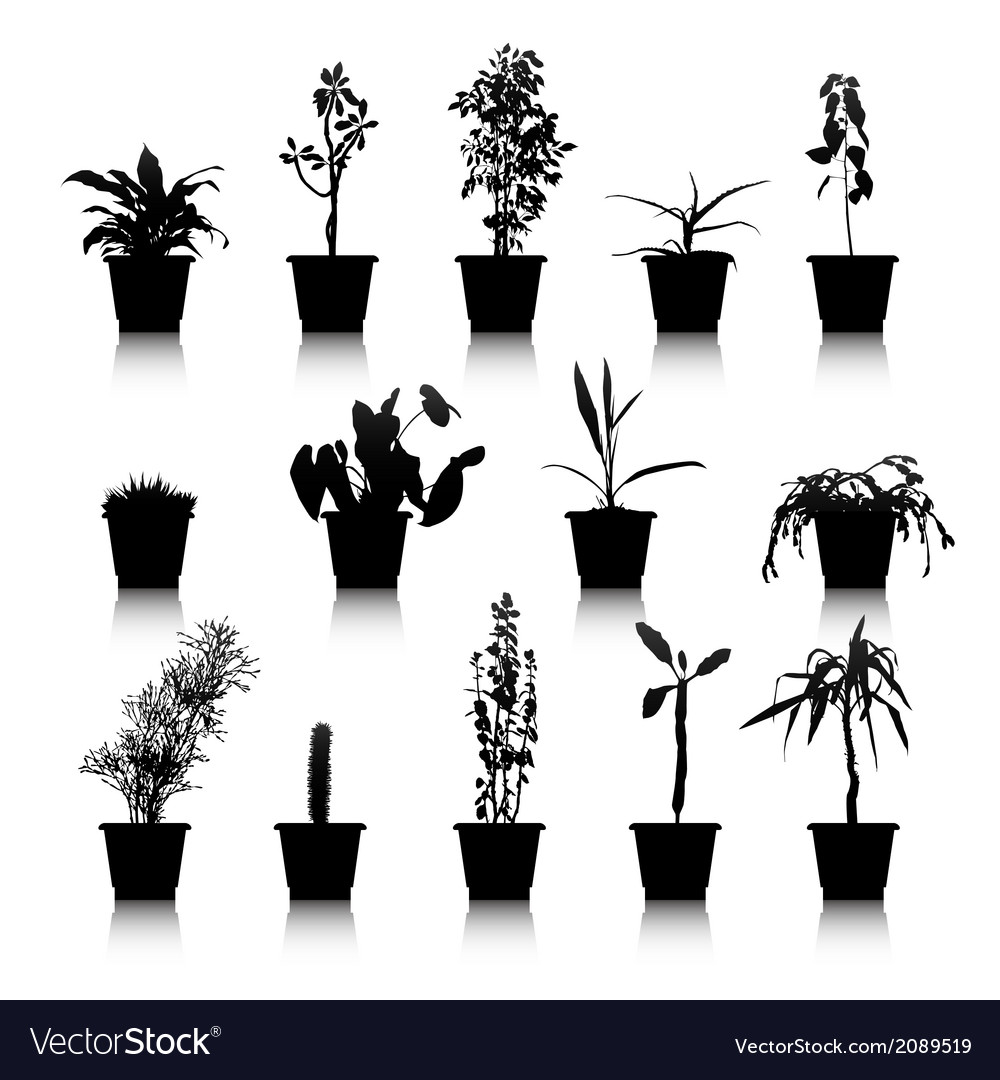 Set of silhouettes house plants vector | Price: 1 Credit (USD $1)