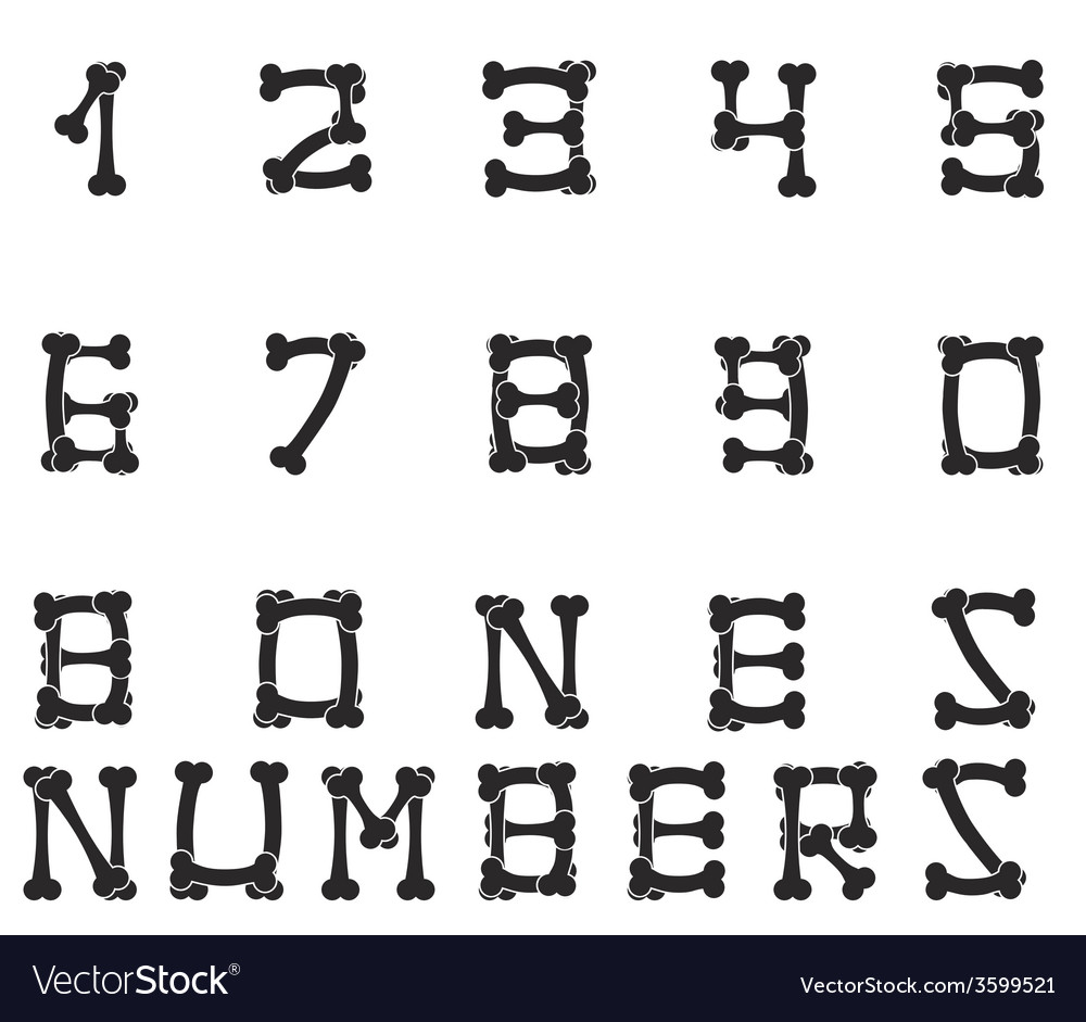Bones numbers white vector