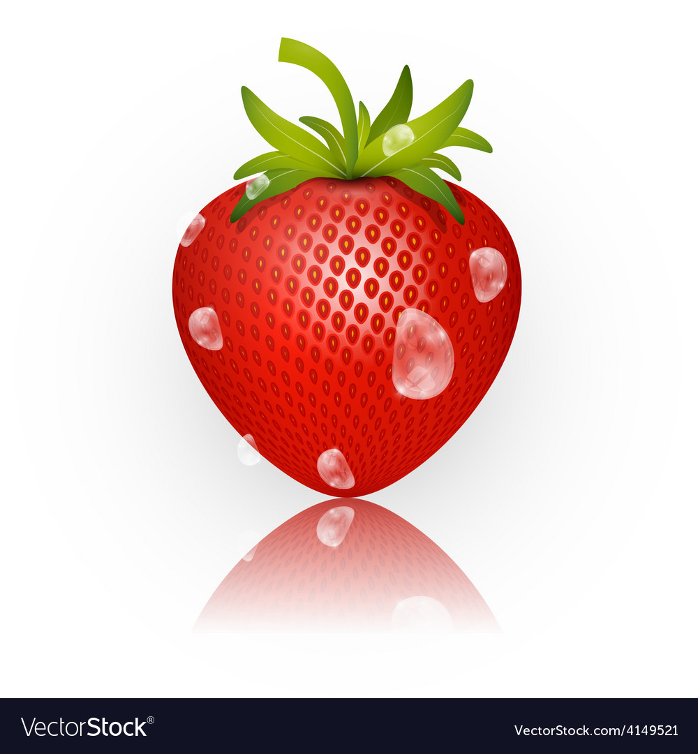 Strawberry isolated on white background vector | Price: 1 Credit (USD $1)