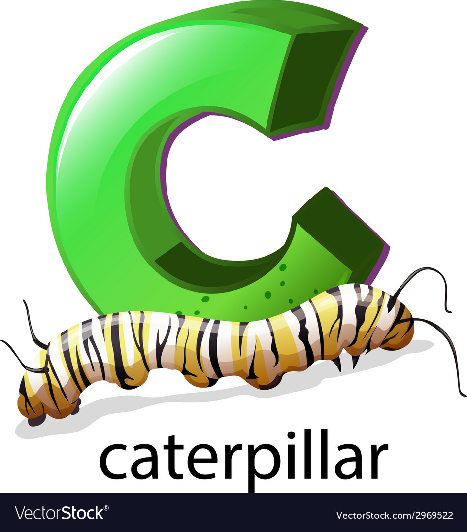A letter c for caterpillar vector | Price: 1 Credit (USD $1)