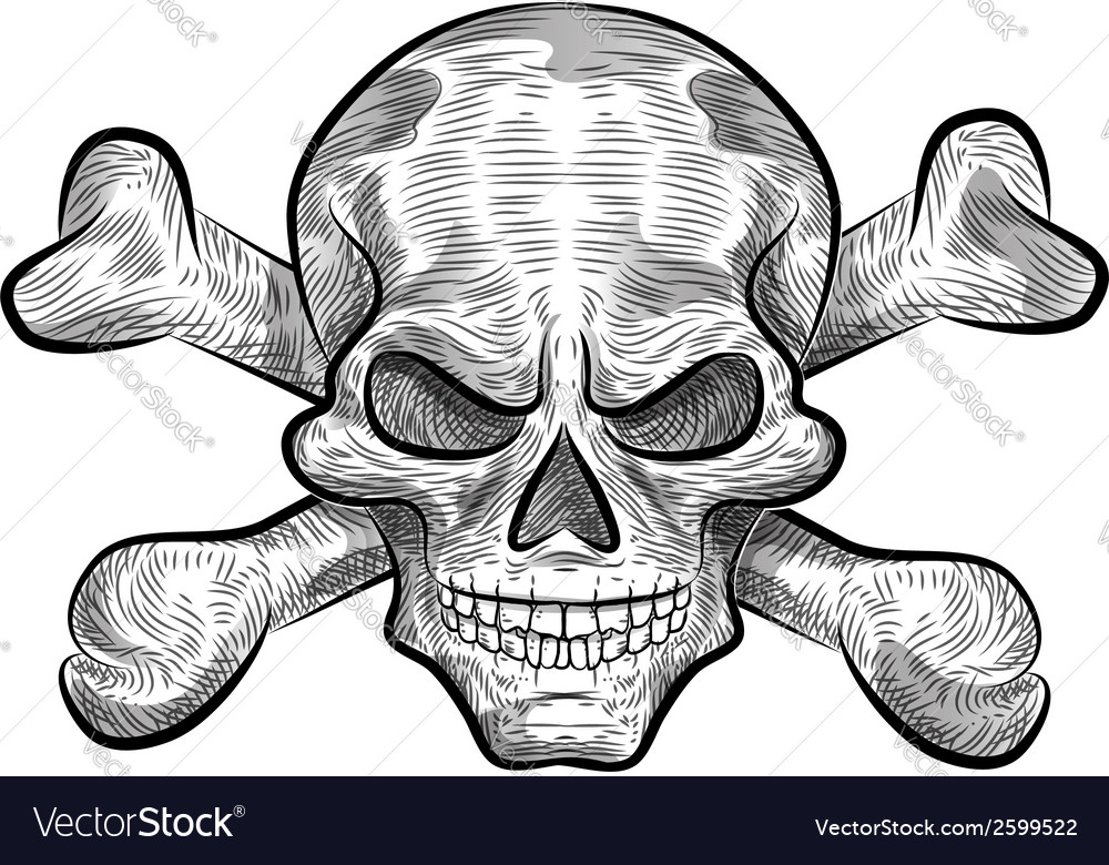 Skull sketch design vector | Price: 1 Credit (USD $1)