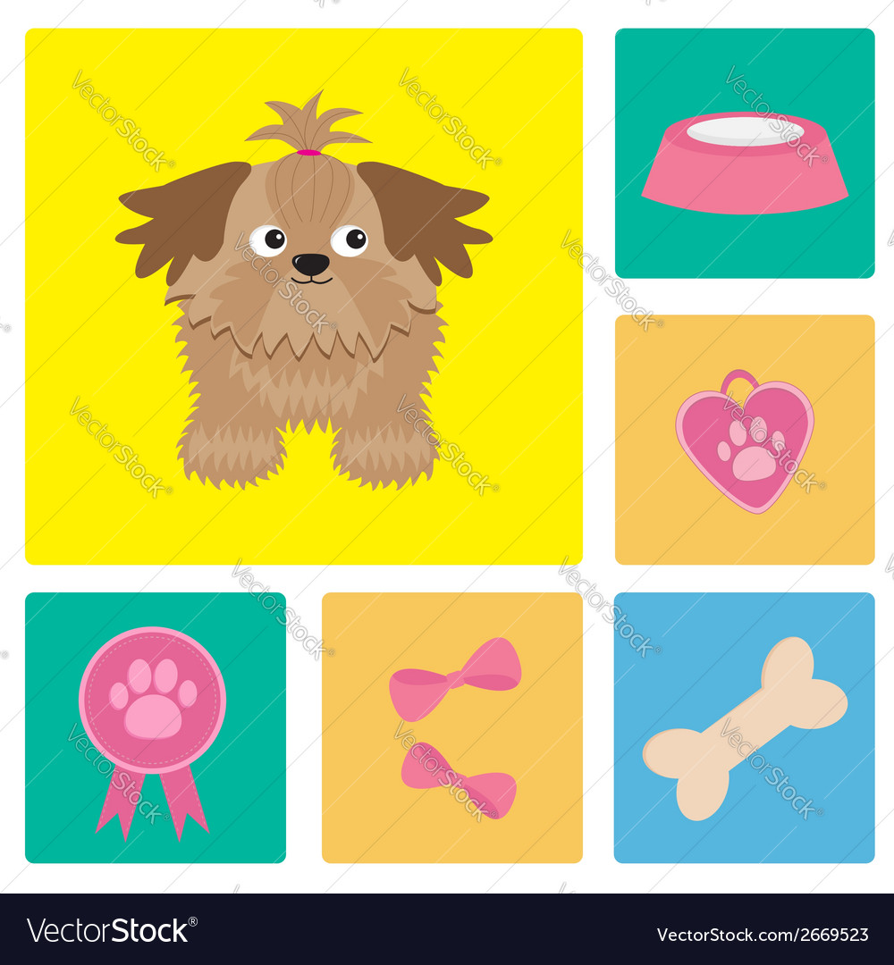 Dog shih tzu and dog stuff bow bone food vector | Price: 1 Credit (USD $1)
