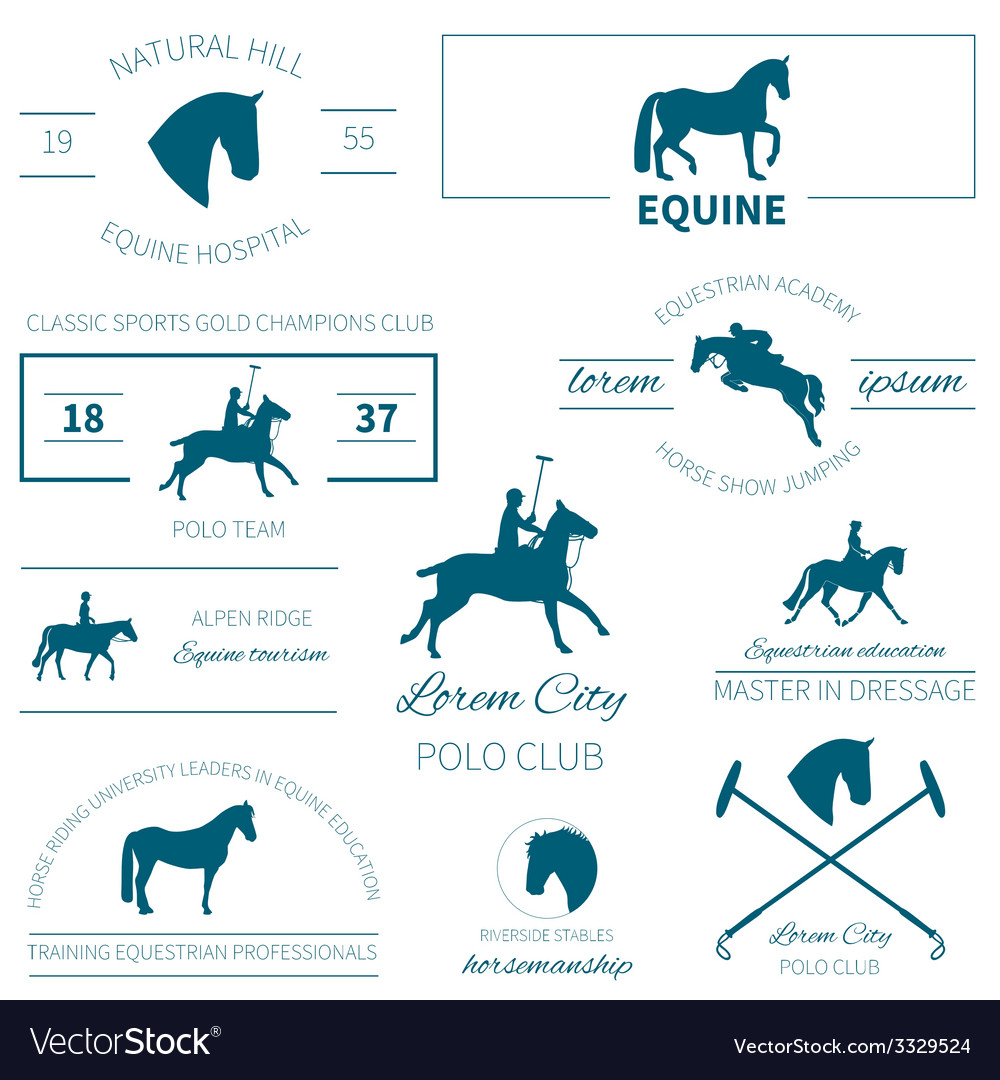 Horse label set vector | Price: 1 Credit (USD $1)