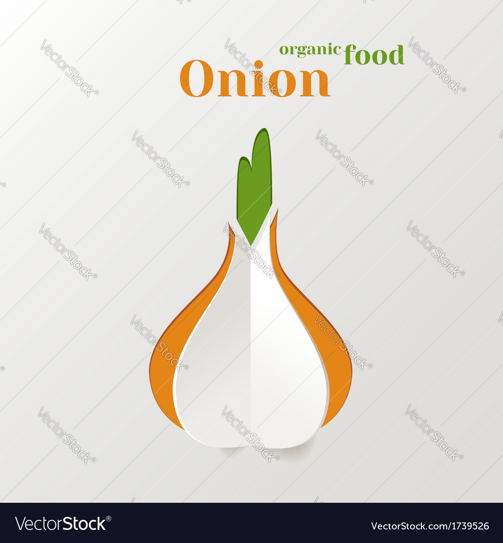 Abstract paper onion vector | Price: 1 Credit (USD $1)