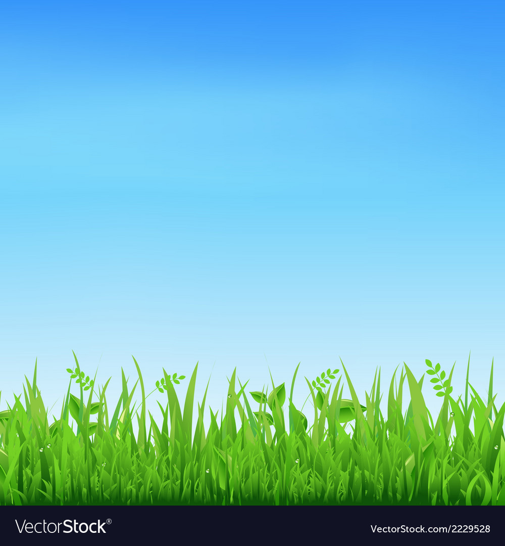 Sale banner with grass vector | Price: 1 Credit (USD $1)