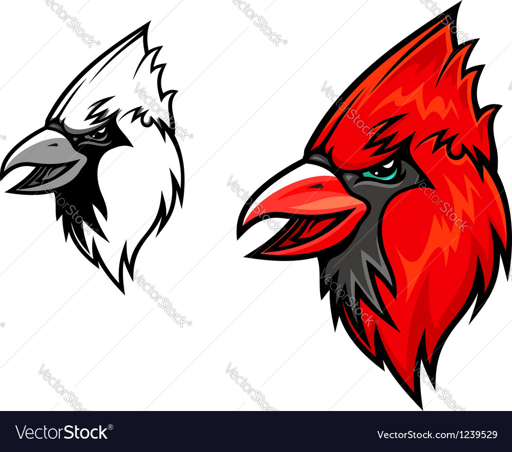 Cardinal birds vector | Price: 3 Credit (USD $3)