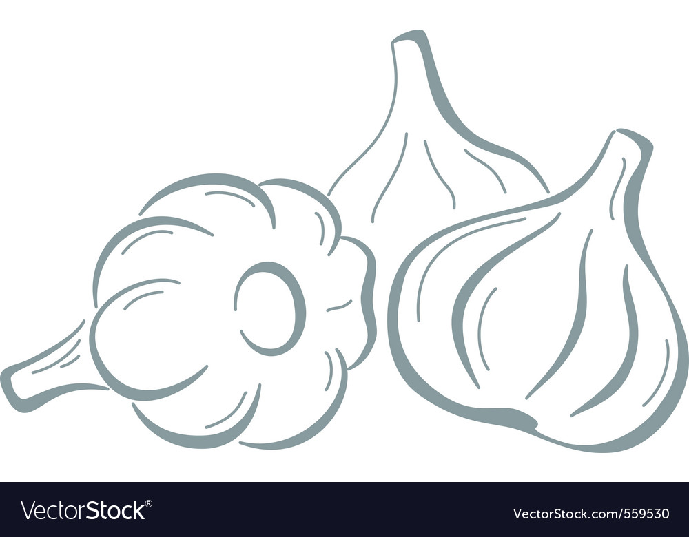 Garlic pictogram vector | Price: 1 Credit (USD $1)