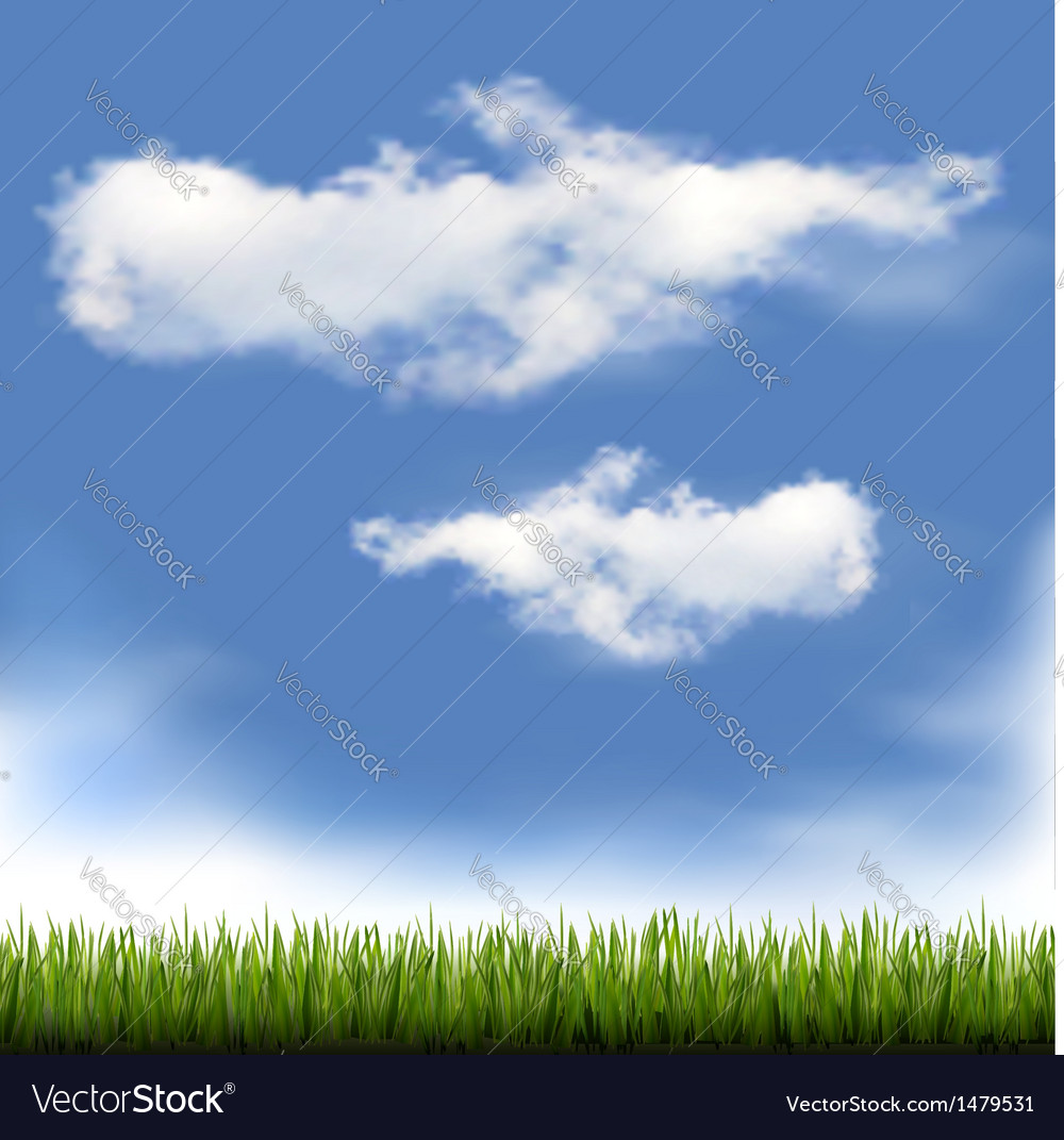 Background with blue sky and grass vector | Price: 1 Credit (USD $1)