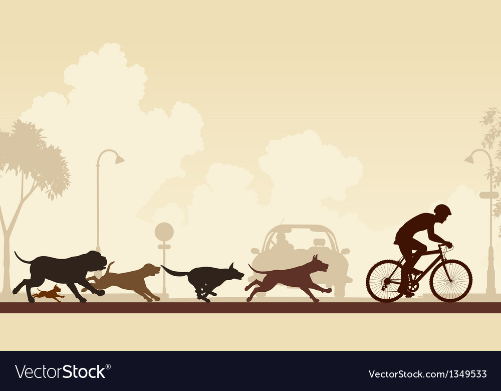 Dogs chasing cyclist vector | Price: 1 Credit (USD $1)