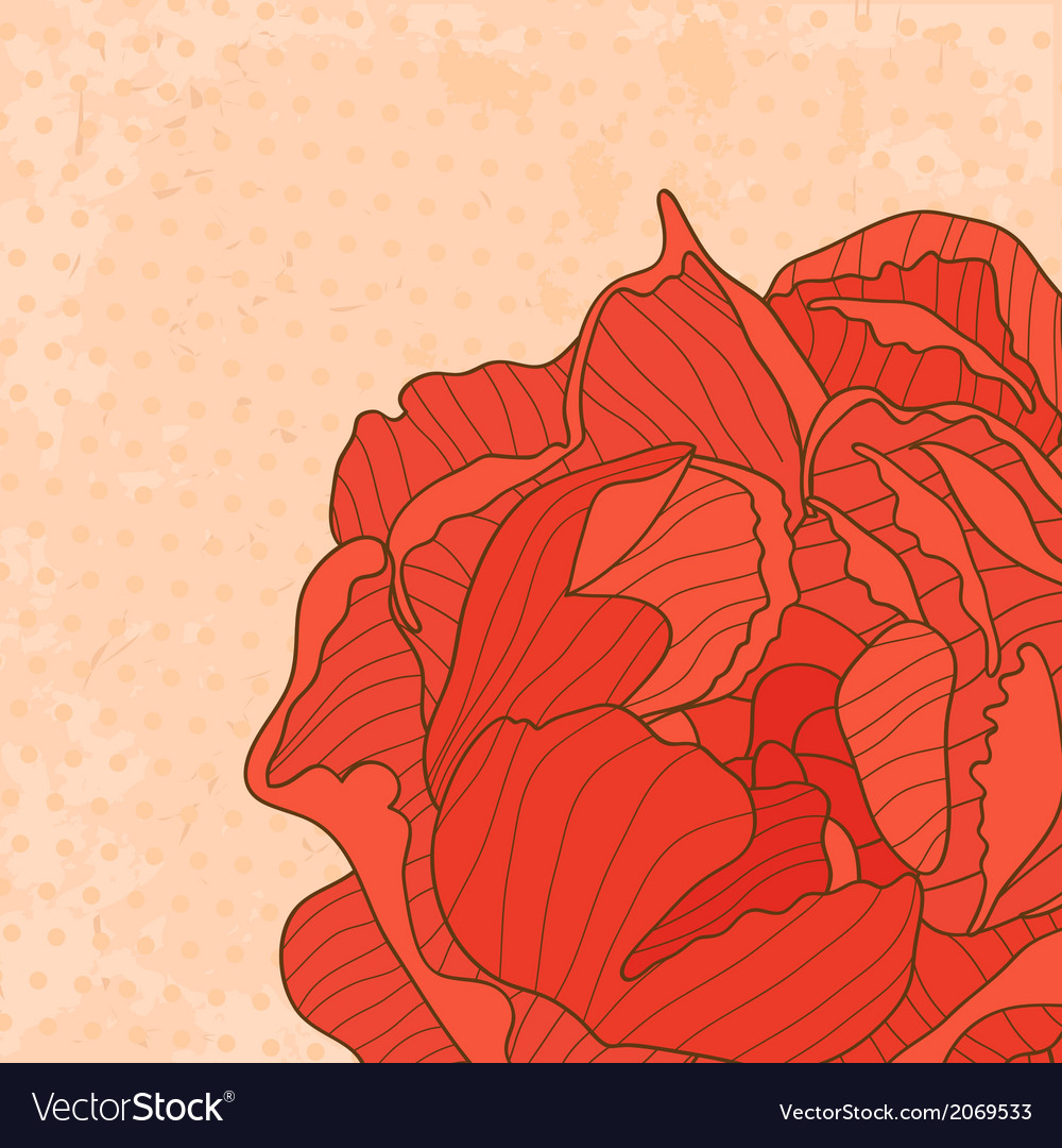 Macro peony card vector | Price: 1 Credit (USD $1)