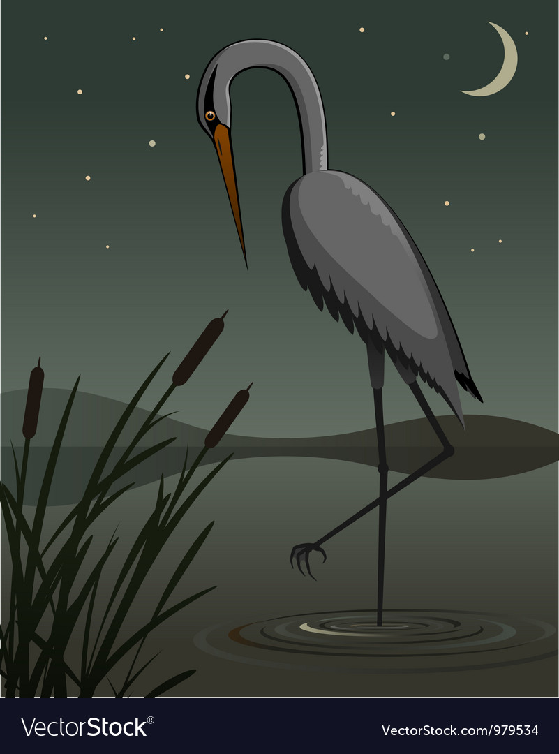 Grey heron vector | Price: 3 Credit (USD $3)