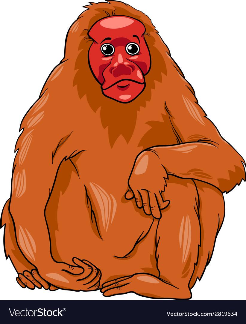 Uakari animal cartoon vector | Price: 1 Credit (USD $1)