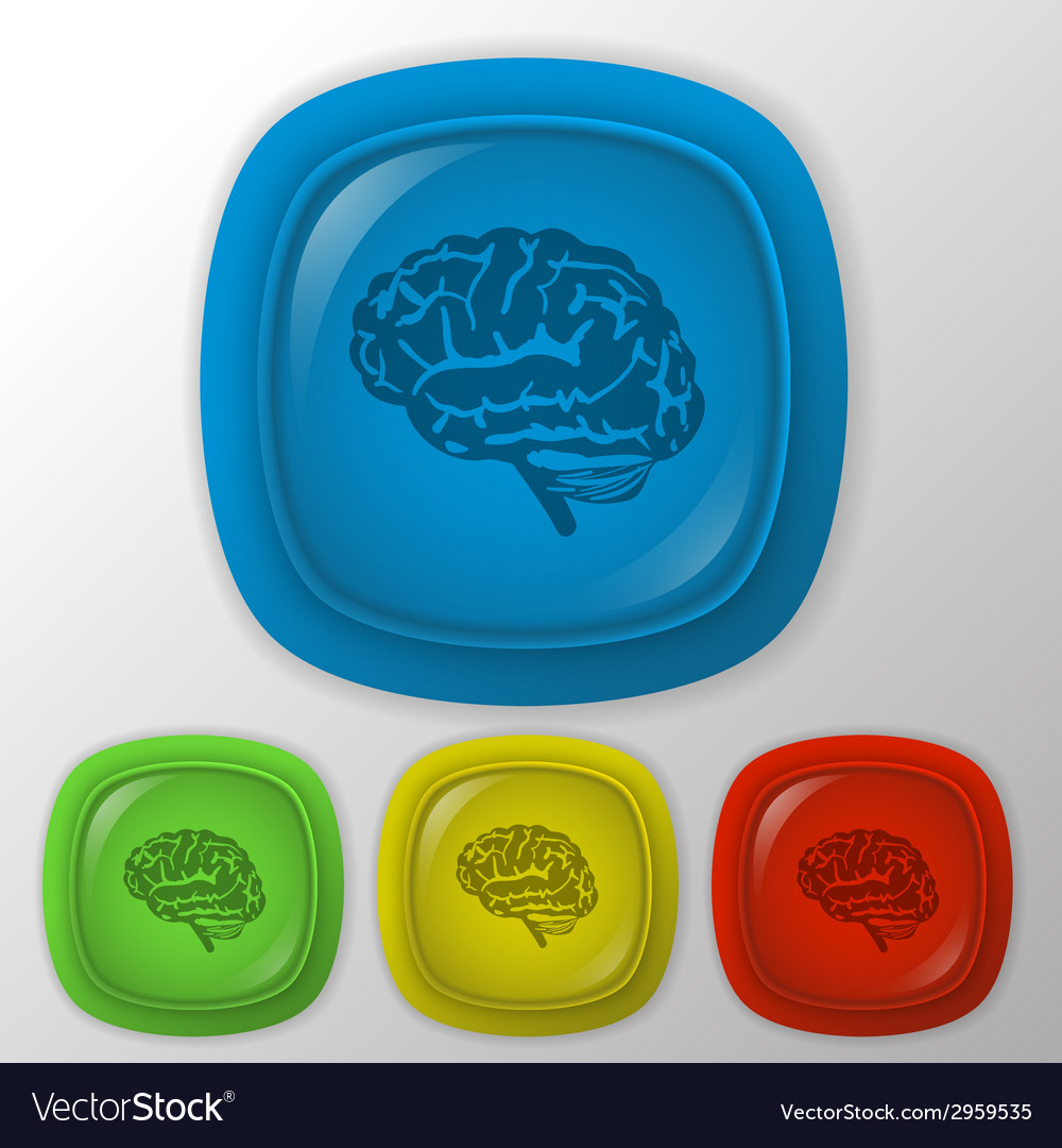 Brain mind and science vector | Price: 1 Credit (USD $1)