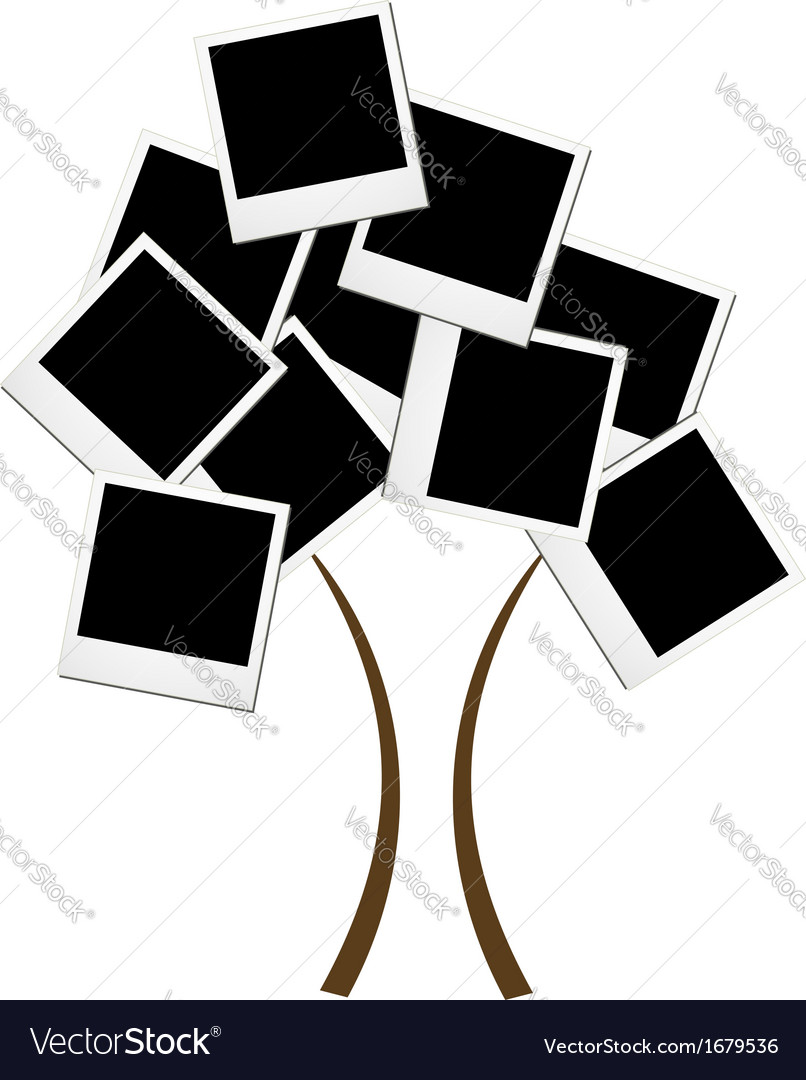 Polaroid tree vector | Price: 1 Credit (USD $1)