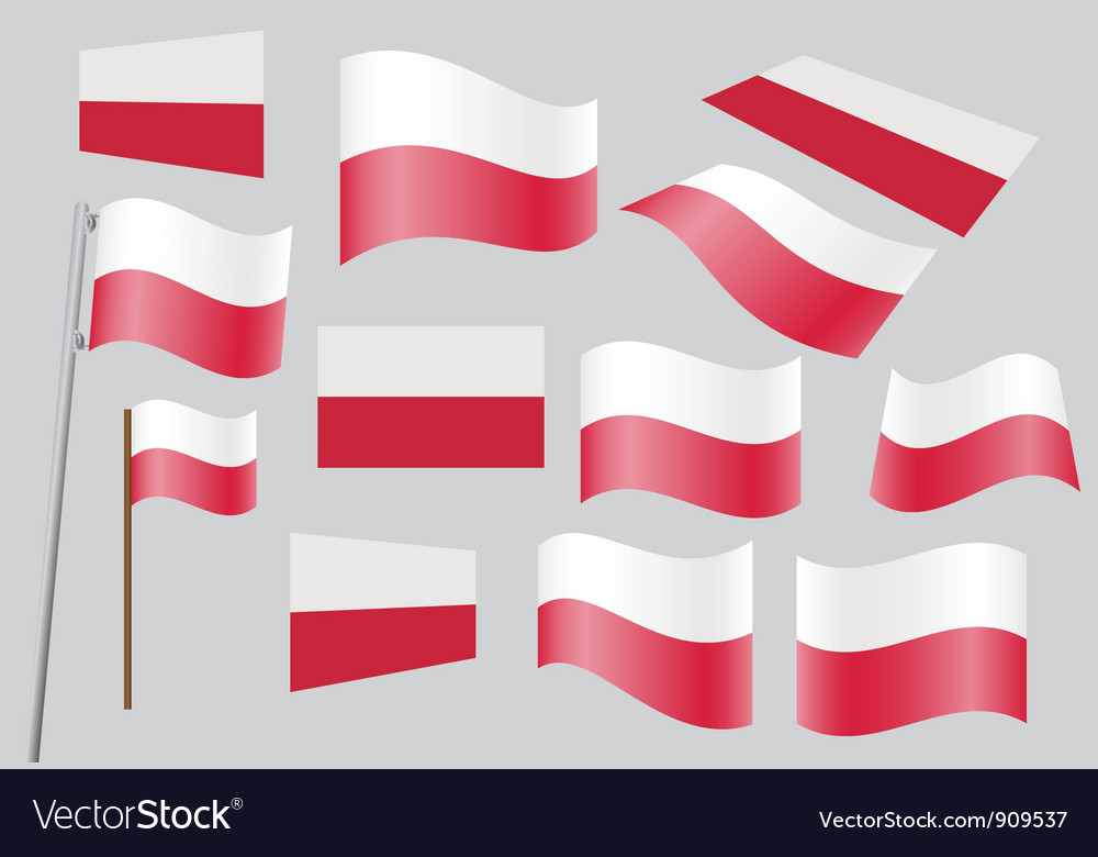 Polish flag vector   Price: 1 Credit (USD $1)