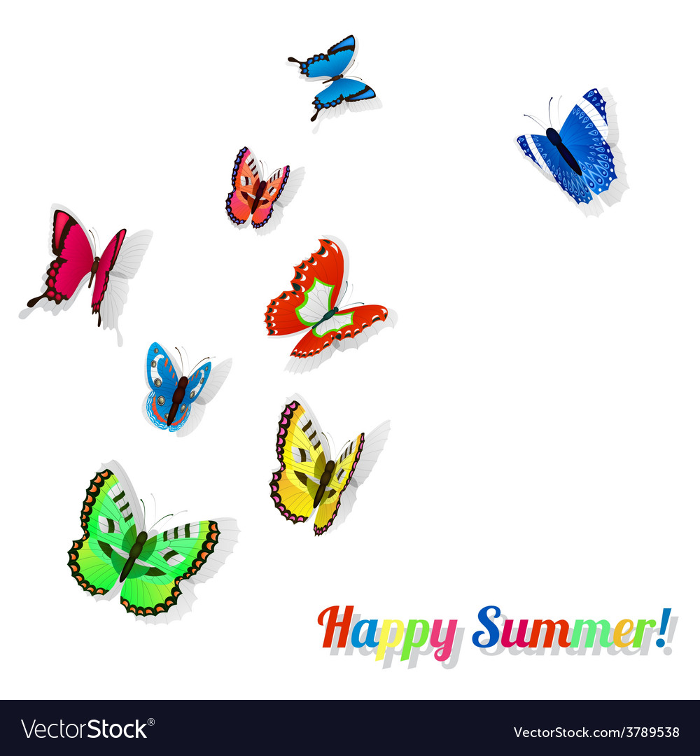Colorful butterflies with shadows vector | Price: 1 Credit (USD $1)