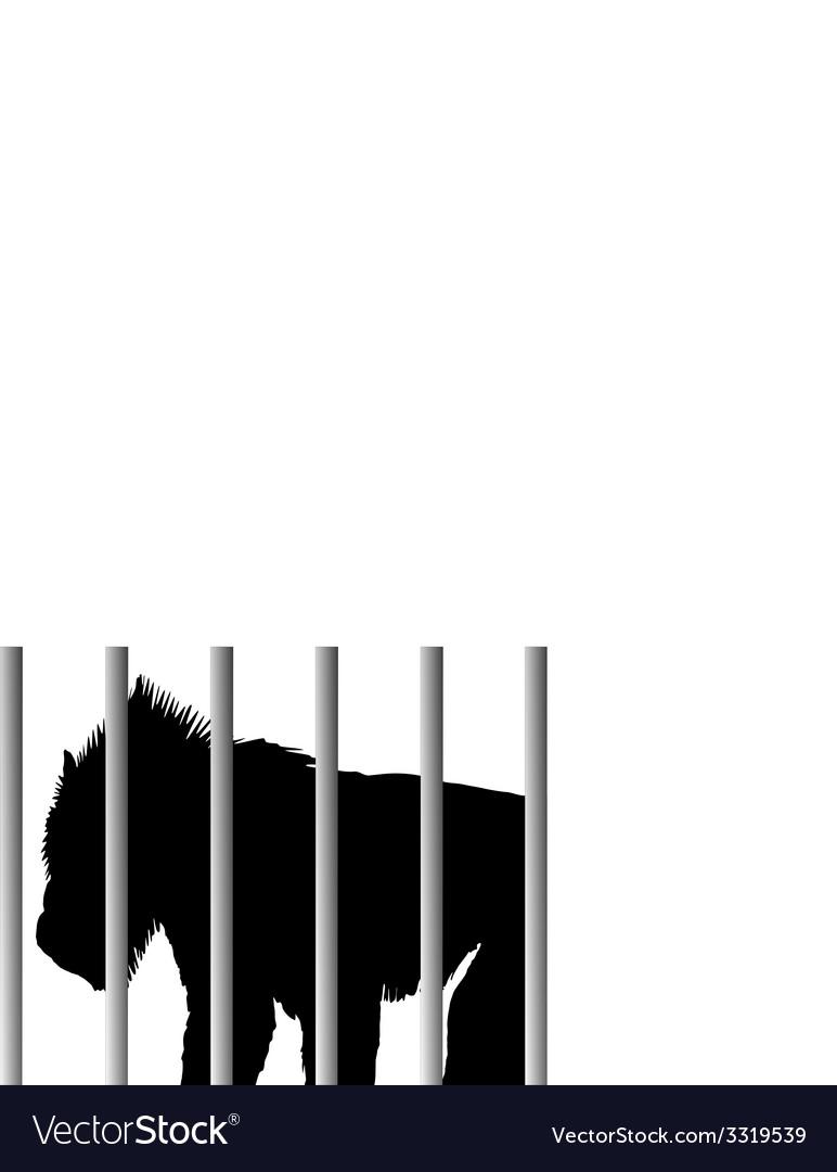 Mandrill in zoo vector | Price: 1 Credit (USD $1)
