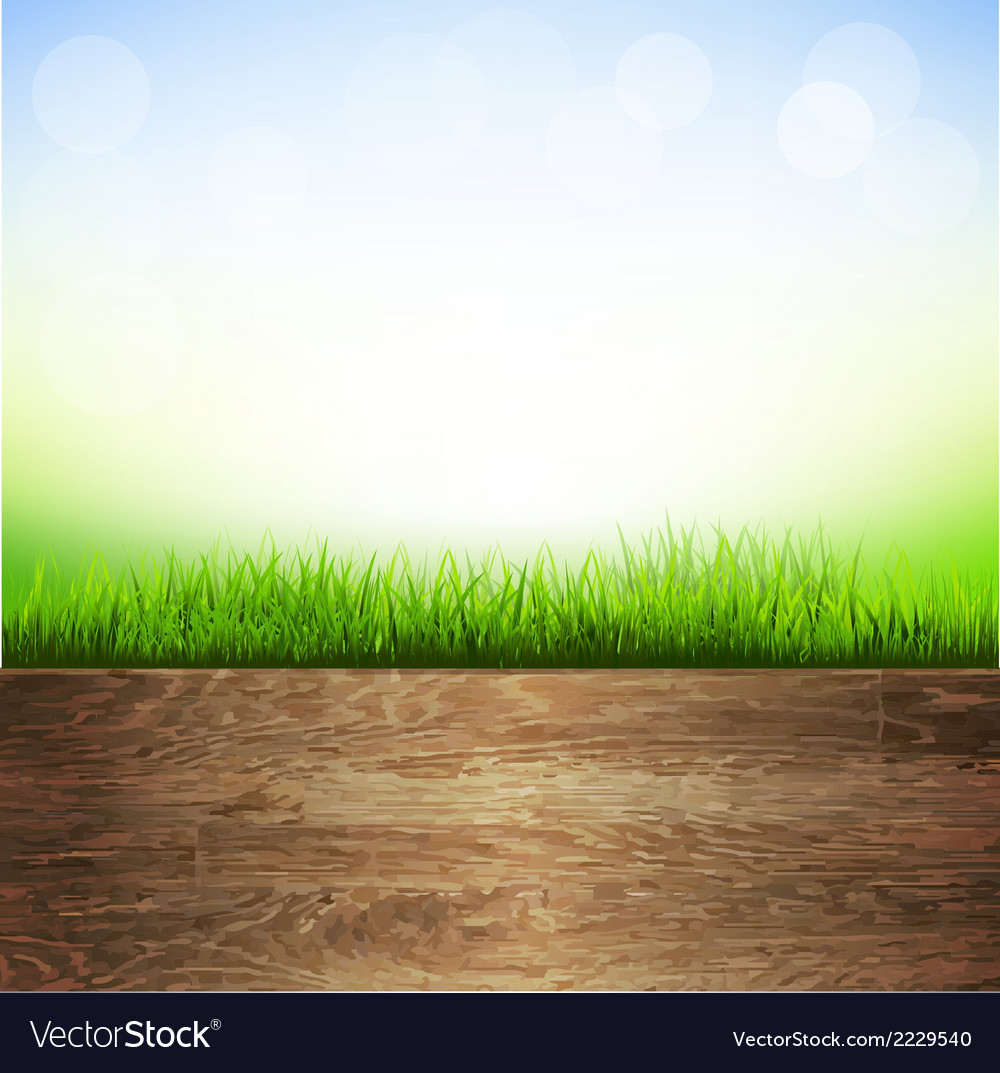 Wooden background with grass border vector | Price: 1 Credit (USD $1)