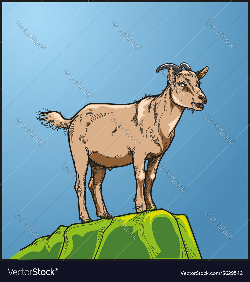 Goats vector | Price: 3 Credit (USD $3)