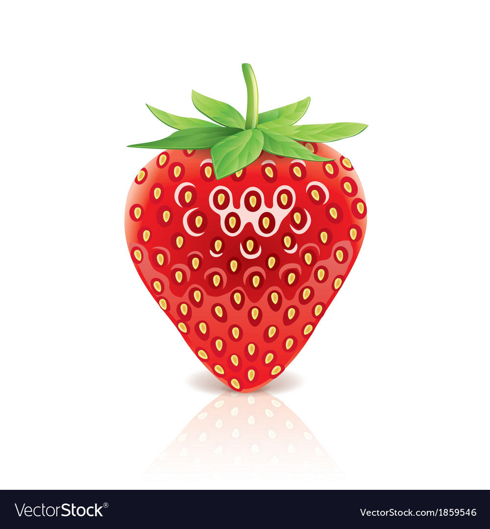 Object strawberry vector | Price: 1 Credit (USD $1)