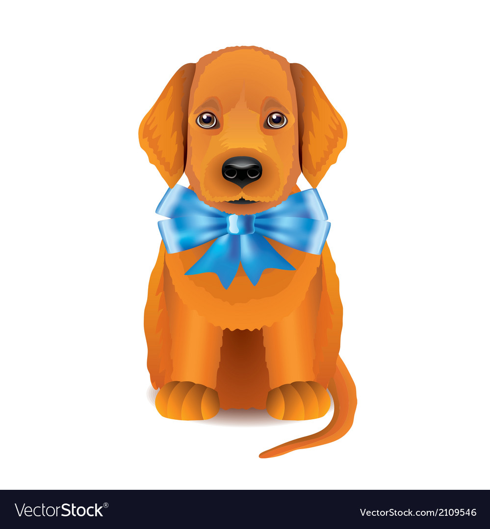 Puppy blue bow vector | Price: 1 Credit (USD $1)