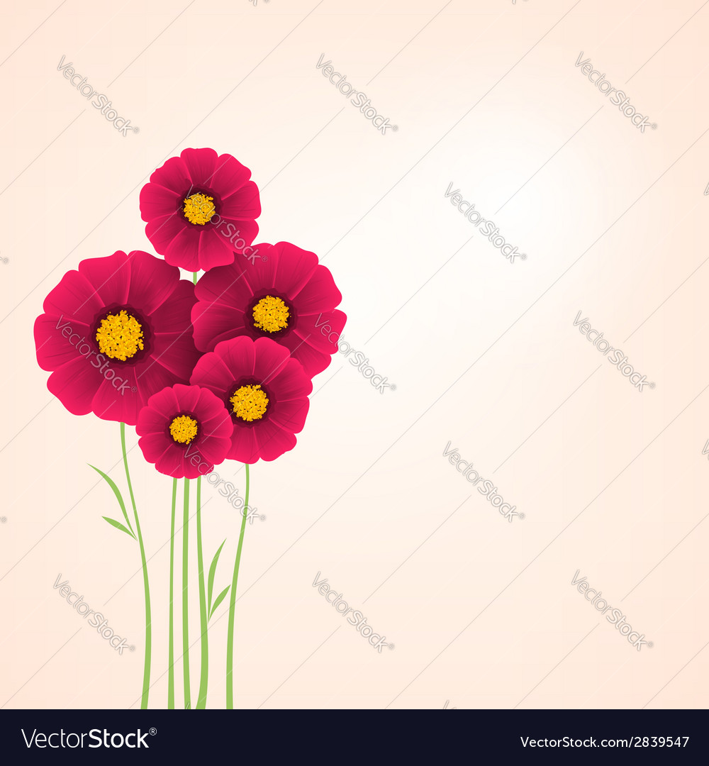 Beautiful flowers dahlias element for design vector | Price: 1 Credit (USD $1)