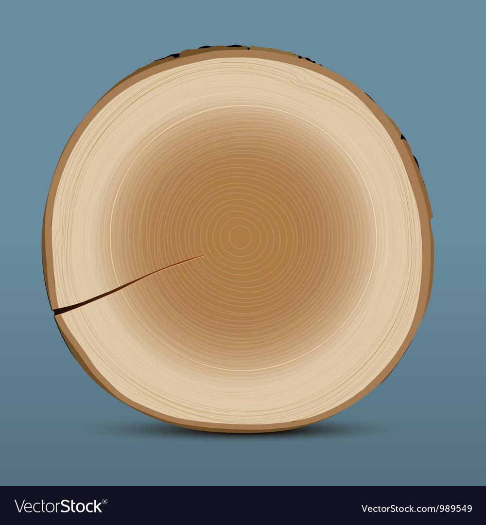 Cross section of tree stump vector | Price: 1 Credit (USD $1)