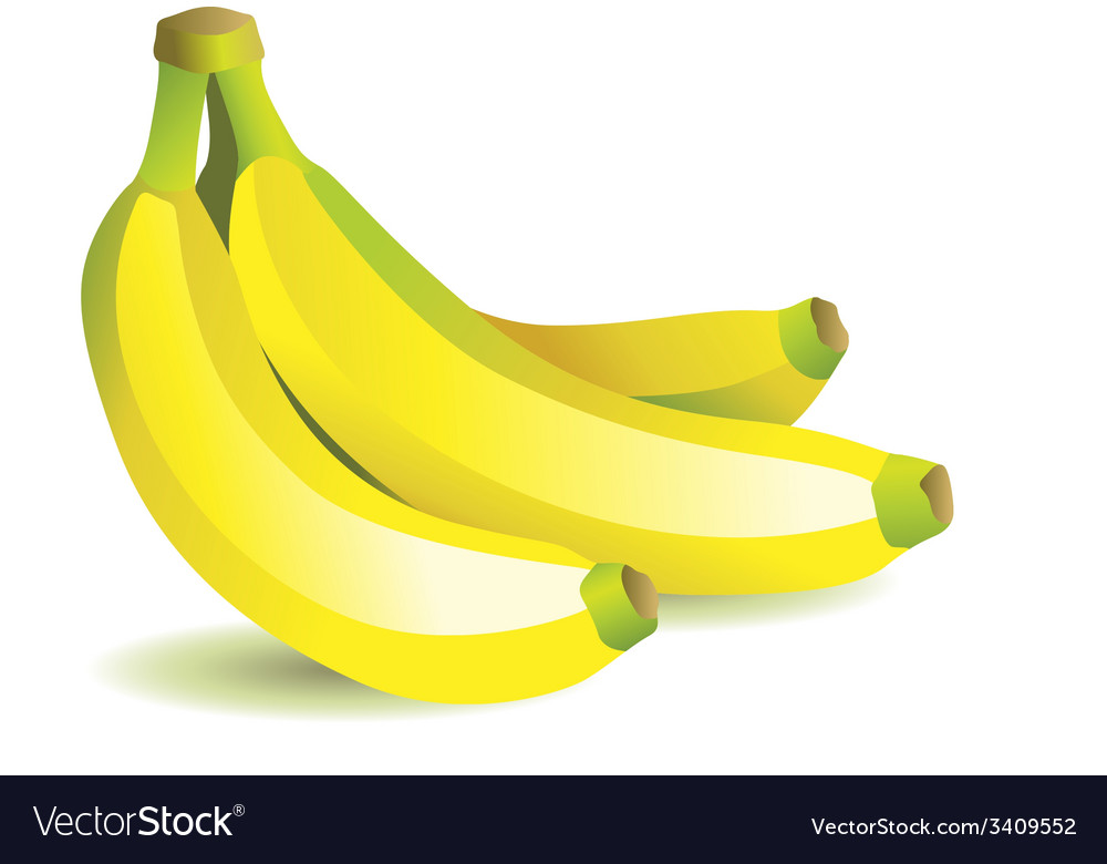 Bunch with bananas vector | Price: 1 Credit (USD $1)