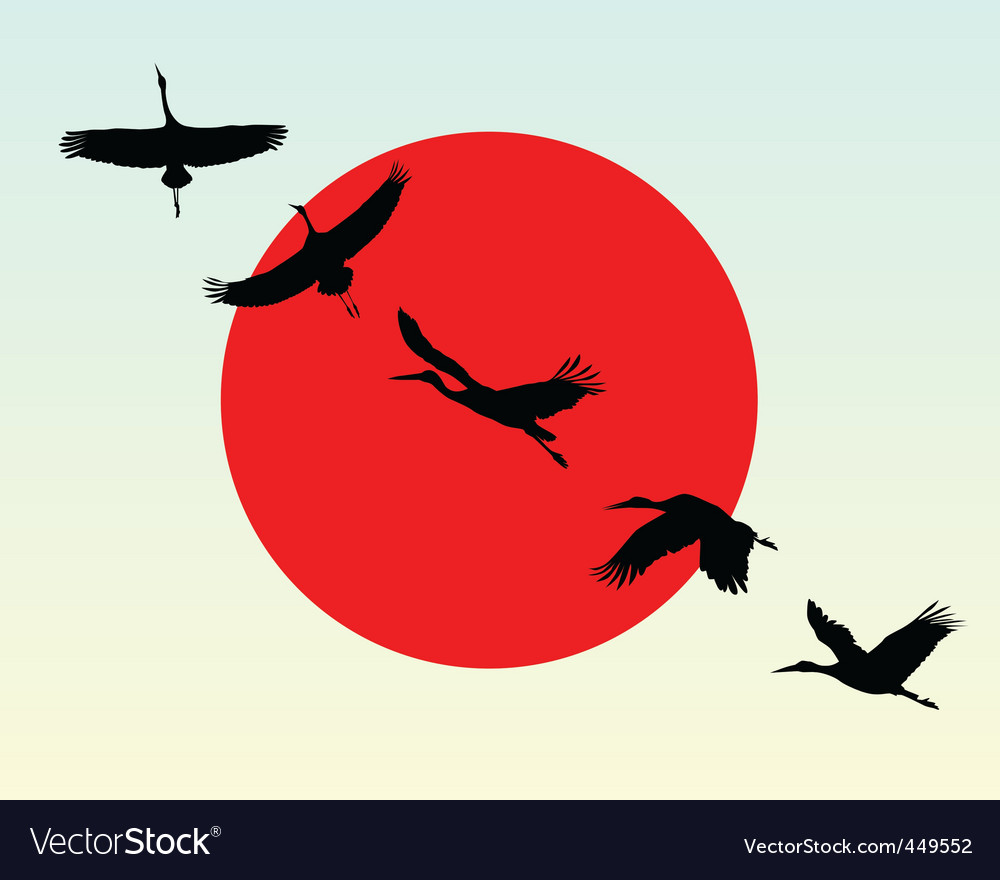 Silhouettes of flying cranes vector | Price: 1 Credit (USD $1)