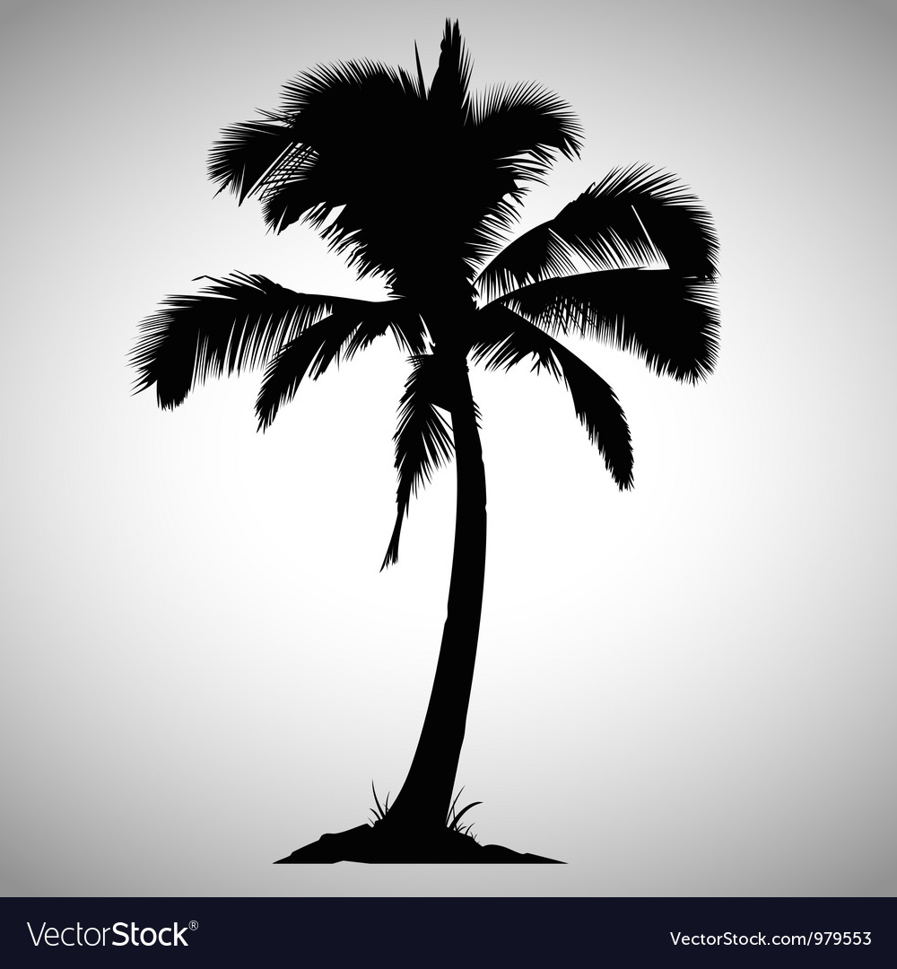 Isolated palm tree vector | Price: 1 Credit (USD $1)