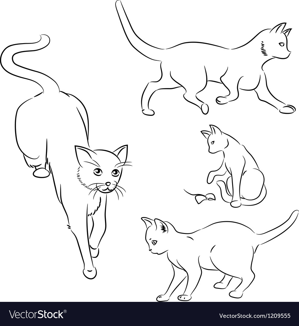 Cat in motion sketches vector | Price: 1 Credit (USD $1)