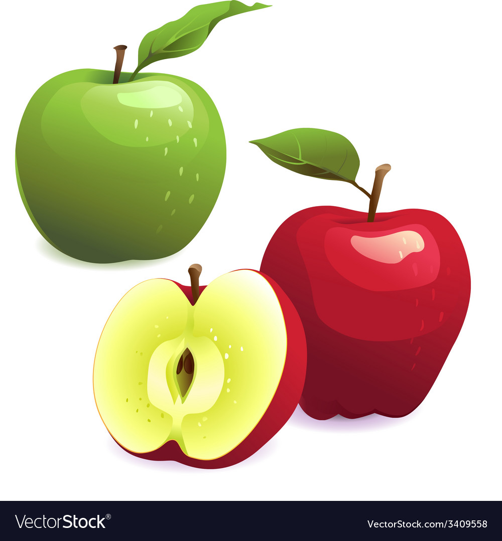 Green and red apples with leaves vector | Price: 1 Credit (USD $1)