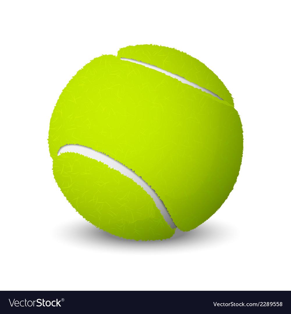 Tennis ball vector | Price: 1 Credit (USD $1)