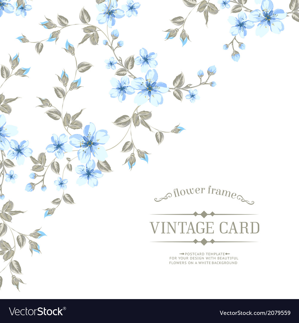 Flower texture on vintage card vector | Price: 1 Credit (USD $1)