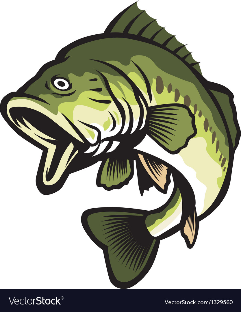 Freshwater fish vector | Price: 3 Credit (USD $3)