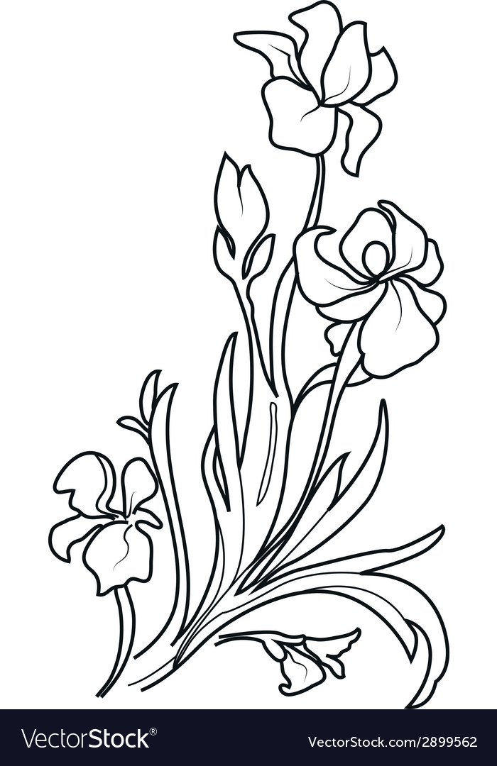 Flower sketch set vector | Price: 1 Credit (USD $1)