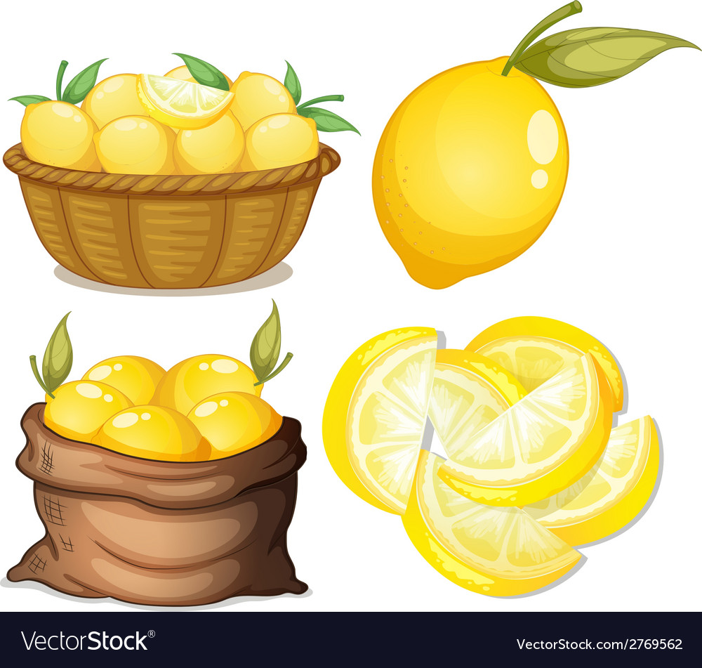 Lemon set vector | Price: 1 Credit (USD $1)