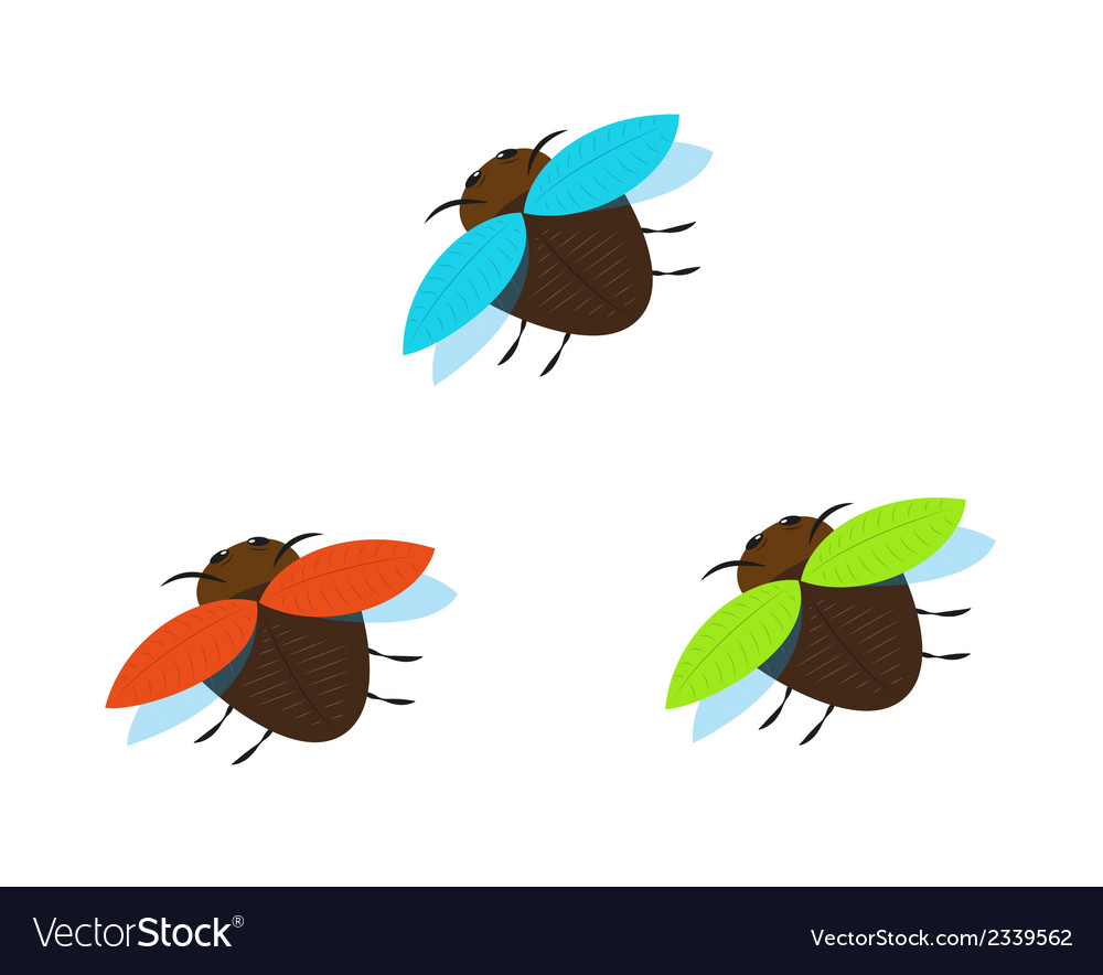 Three brown bugs with different color wings vector | Price: 1 Credit (USD $1)
